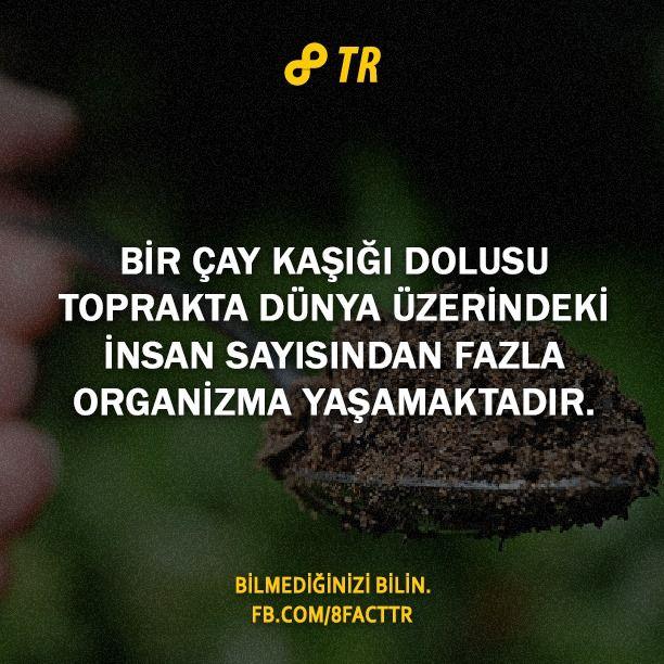 3.jpg