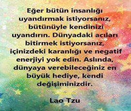 FB_IMG_1464354197503_270_230.jpg