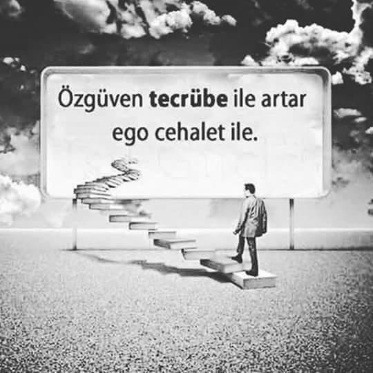 FB_IMG_1465114909541.jpg